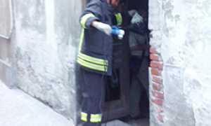corta incendiobarboss
