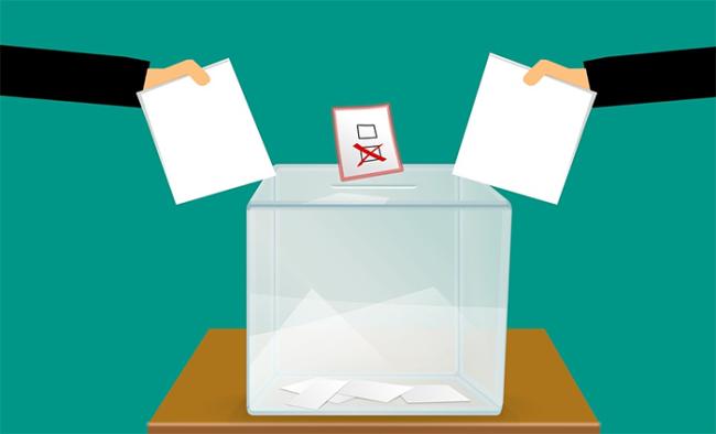 disegno referendum urna schede voto