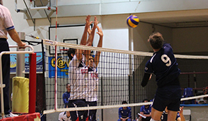 volley domo bistrot