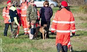 corta cane soccorritori auto prato