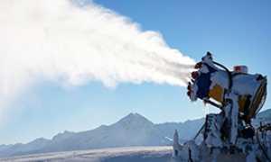 corta cannone neve
