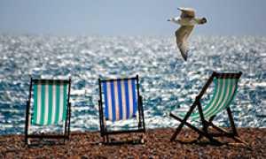 corta estate ombrelloni mare gabbiano