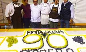 corta festa UVA 90 PASTICCERI TORTA