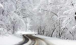 corta neve strada bosco